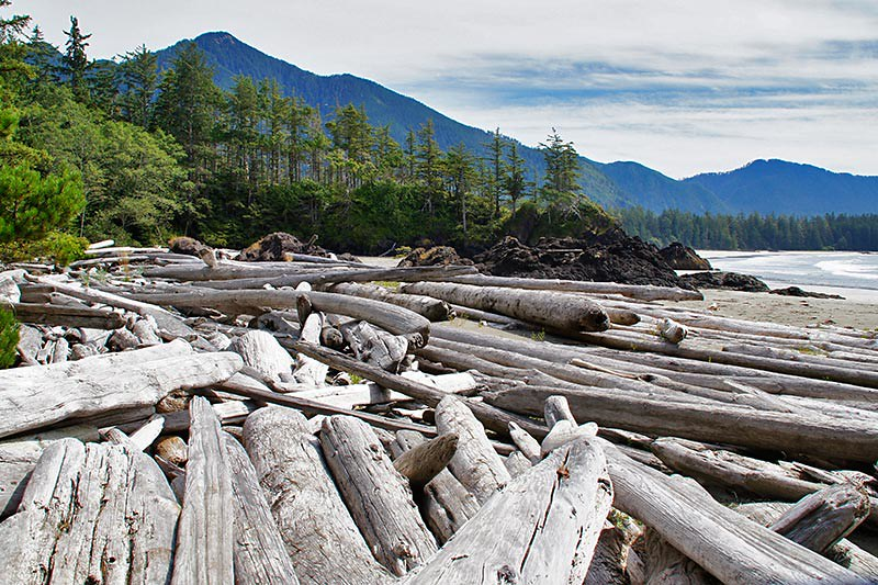 Rugged Point Marine Park, Vancouver Island, British Columbia. Photo: Santa Brussouw.