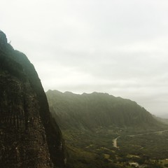 """One Day I'll Fly Away"" ―Nicole Kidman (at Nuuanu Pali State Park)"