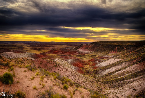 arizona desert painted holbrook