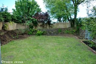 Side garden - during