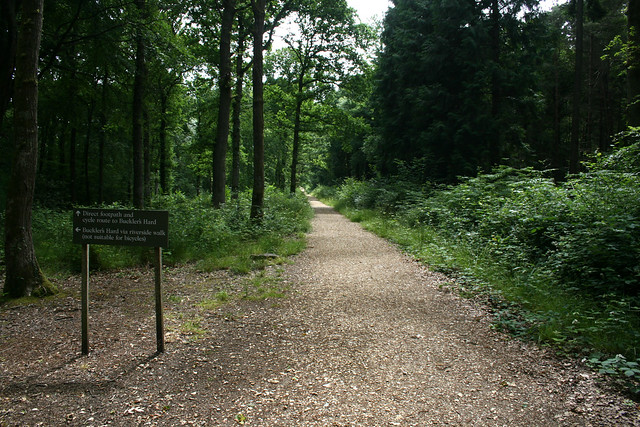Footpath between Beaulieu and Bucklers Hard