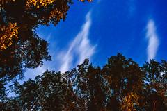 Clouds | June Solstice
