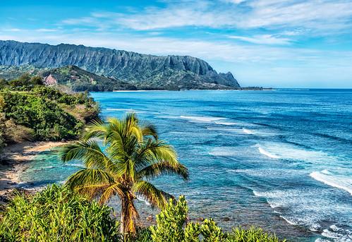 seascape beach landscape hawaii palm pacificocean kauai condominium balihai princeville palikekua mountmakana