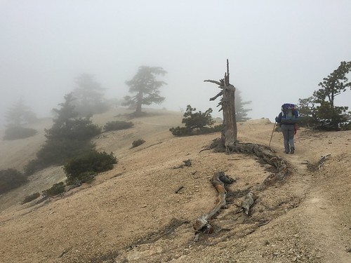 PCT: Day 30