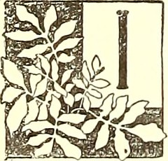 """Image from page 117 of """"The American garden"""" (1873)"""