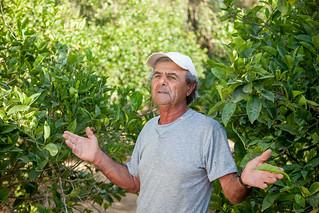 Farmers on Malta 7