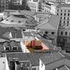 Un #oasis de #color entre #grises #igersmadrid #tejados #megustamadrid #iphone6 #instagood