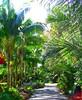 ~Oct 2009 Fairchild Gardens #5~