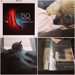 Lazy and loving it. #books, #petsofinstagram, #summer, #iainpears