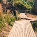 Bukit Tengkorak Pathways