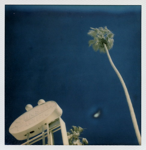 california ca street blue trees sunset toby 2 sky urban test white lake color art abandoned film sign silver project palms french polaroid sx70 for la los artist boulevard pacific angeles ghost vincent motel palm projection tip cameras installation albino type instant bates 20 hancock gen derelict pioneer generation fronds blvd impossible the gen2 lamouroux tobyhancock impossaroid