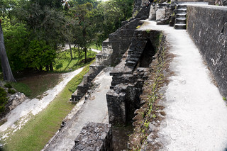 Attēls no Central Acropolis. guatemala tikal petén