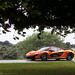 A P1 under a tree by Aimery Dutheil photography