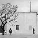 P3110381  urban  vision  !! by gpaolini50