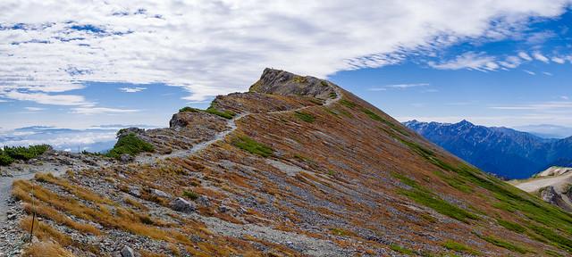 一段下った岩陰より白馬岳山頂を仰ぐ・・・寒かった・・・