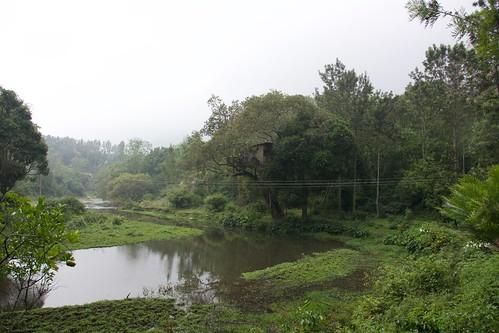 treehouse tamilnadu kodaikanal southindia