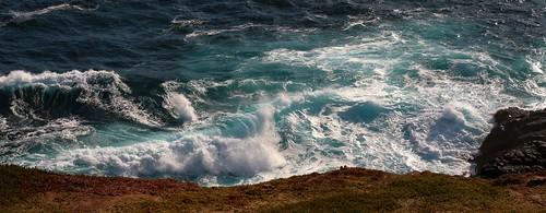 ocean surf waves australia victoria views limestone vegetation geology petrifiedforest blowholes capebridgewater 201553c