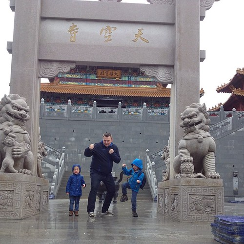 Echte kungfu-krijgers gespot in pairidaiza