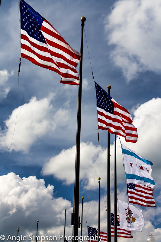 navy pier flags memorial day (1 of 1)