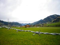 Barbed wire farmhouse