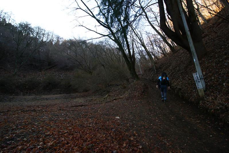 20141230-陣馬山-0055.jpg
