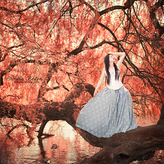 the lost princess...