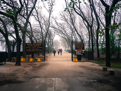 Jane Addams Park