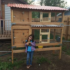 Project rabbit hutch nears completion. Lily and I were going to paint it today, but then it rained. Big surprise, right? <3