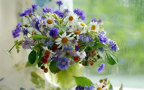 Квіти букет