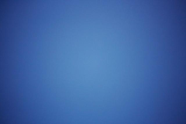 Blue Collar 46