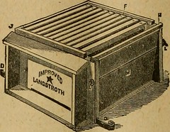 """Image from page 173 of """"American bee journal"""" (1861)"""