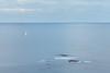 North Sea Simple