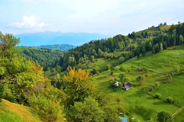Magura - Landscape