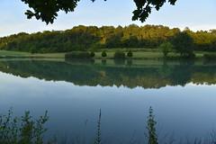 Le grand étang au crépuscule