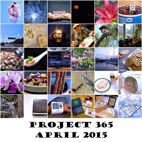 Project 365 - April 2015
