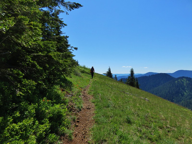 Augspurger Trail