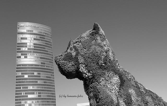 Puppy y Torre Iberdrola-Bilbao-Euskadi.