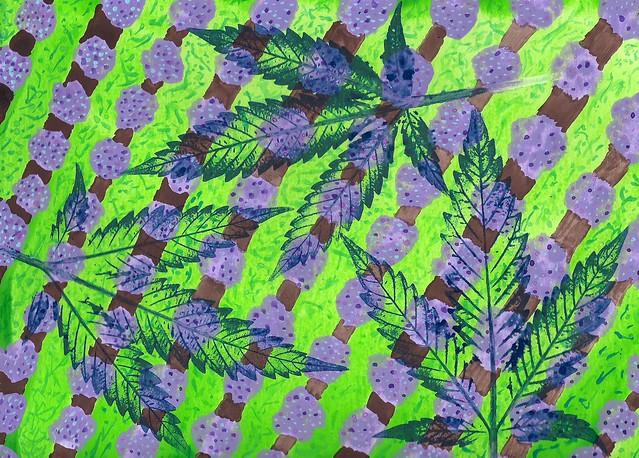Field Of Lavender - 2015
