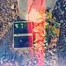 Flores homenaje para Vivian Maier