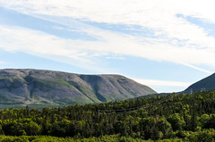 2016 Summer Drive - Newfoundland, CA
