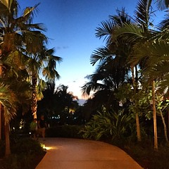 Another evening in Paradise Island comes to an end.  I've been to a lot of workshops over the last 11 years as a professional photographer, and I think I can honestly say that #fstoppersworkshops focuses on craft, artistry, and supporting student success