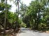 Road to Velsao