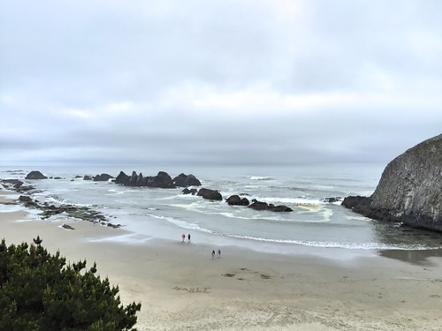 Oregon Coast, May 2015