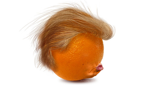 #TheBigOrangeHead in profile