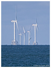 HolderDS0D1706-Wind-farm-and-Gannet