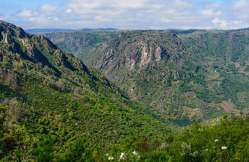 Valle del Arroyo Ropinal