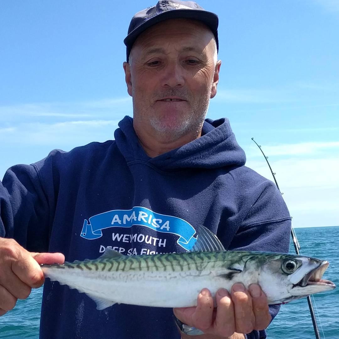 John's jumbo mackerel #amarisaweymouth