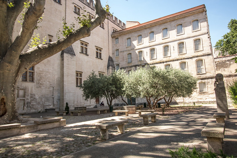 Provence cyling Avignon library outside