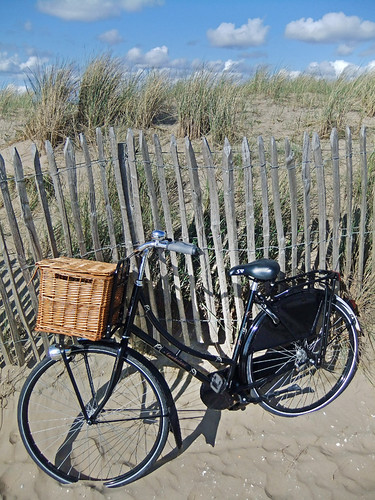 Bicycle by the Dunes on the Coast of Holland