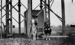 Children at Julia Creek riding billy goats - 1911